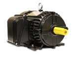 Picture of PE254T15-4-3B, 15HP, 1800, 254T, 3P/208-230/460V (S)
